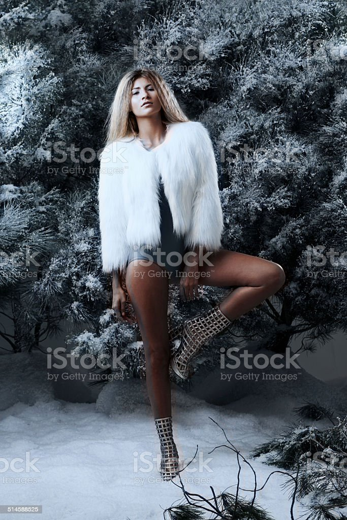 Confidence in the heart of winter stock photo