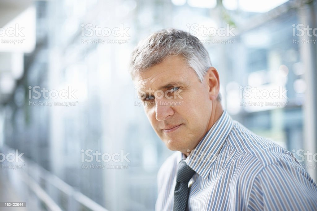 Confident business man royalty-free stock photo