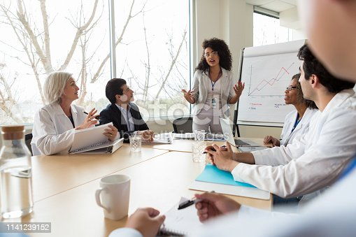 istock Confident businesswoman gives presentation to group of doctors 1141239152