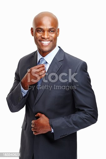 istock Confident executive happy in corporate world 183340523