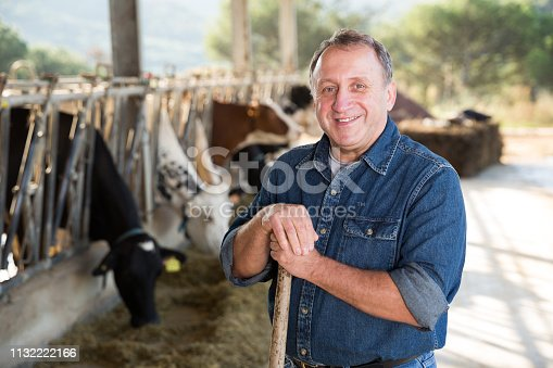 Portrait of confident senior man owner of dairy farm
