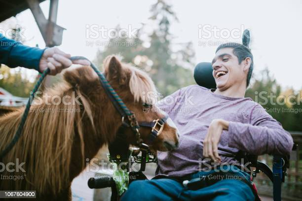 Confident young man in wheelchair visits therapy horse picture id1067604900?b=1&k=6&m=1067604900&s=612x612&h=jj4svxtnhoqjolgcjnccp2h 4xflynnqul7tjgttyxc=
