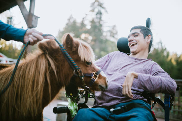 Confident Young Man In Wheelchair Visits Therapy Horse A cheerful young adult man with cerebral palsy spends time with a pony, used as a therapy animal. alternative therapy stock pictures, royalty-free photos & images