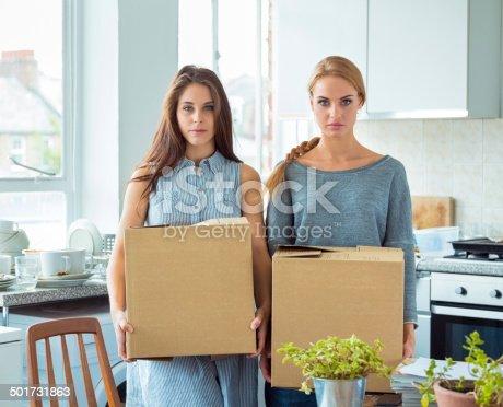 istock Conflict between roommates 501731863