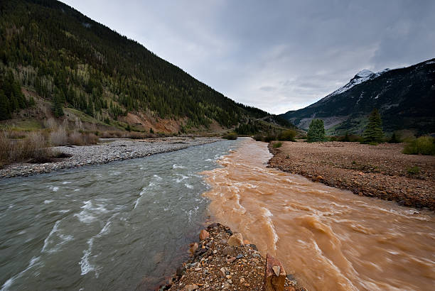 Confluence of Cement Creek and the Animas River The confluence of muddy colored Cement Creek and the Animas River was photographed in Silverton, Colorado, USA. san juan county colorado stock pictures, royalty-free photos & images