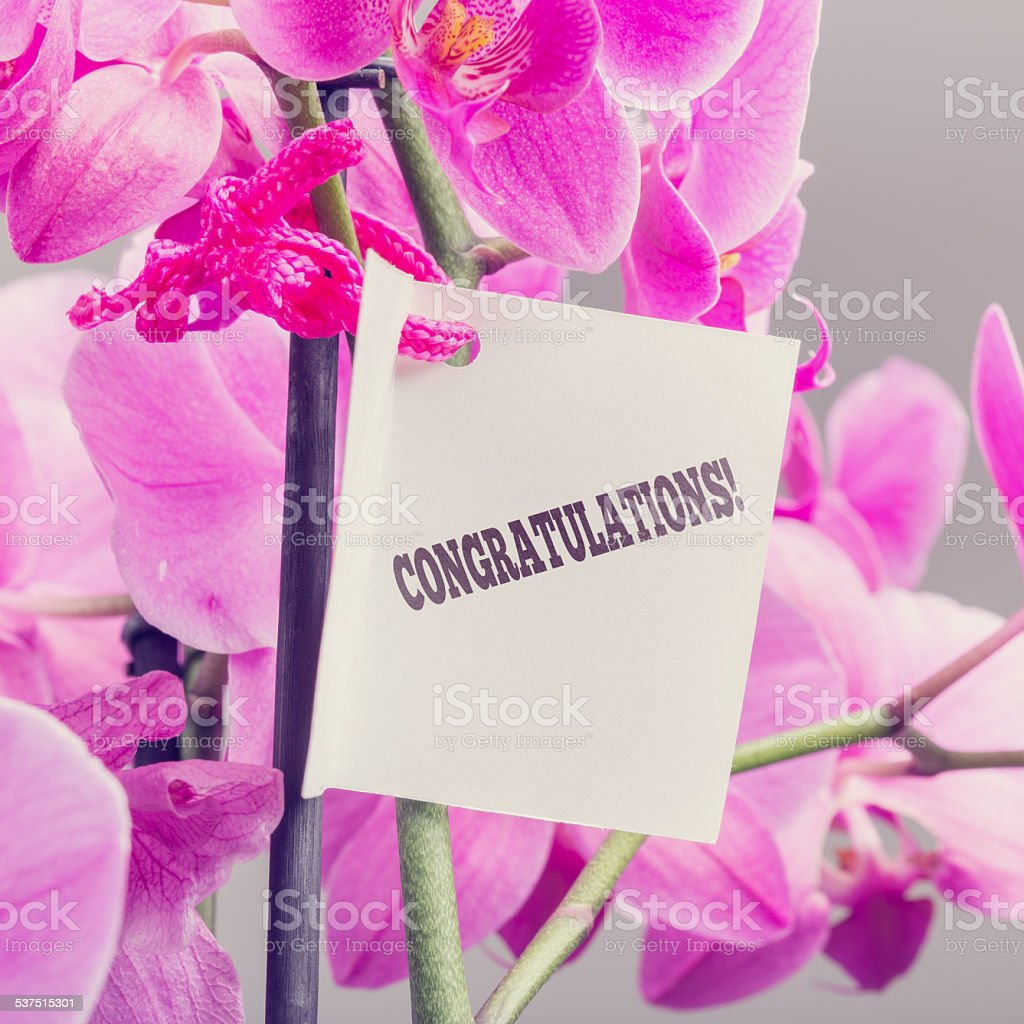 Congratulations note with a floral bouquet stock photo