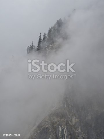 istock Conifers in the fog in the Untersulzbachtal on a rainy autumn day 1283567801