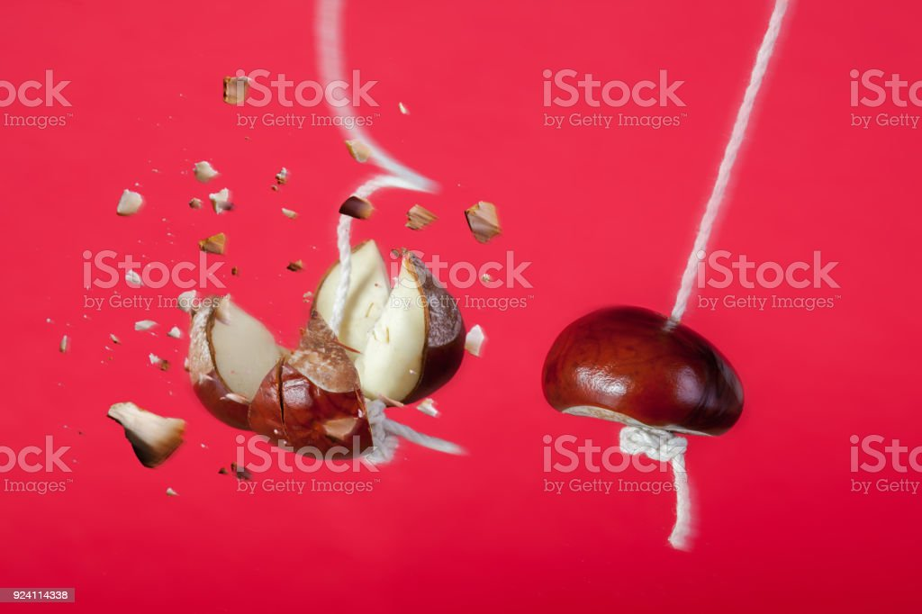 Conker exploding on a string in a traditional game stock photo