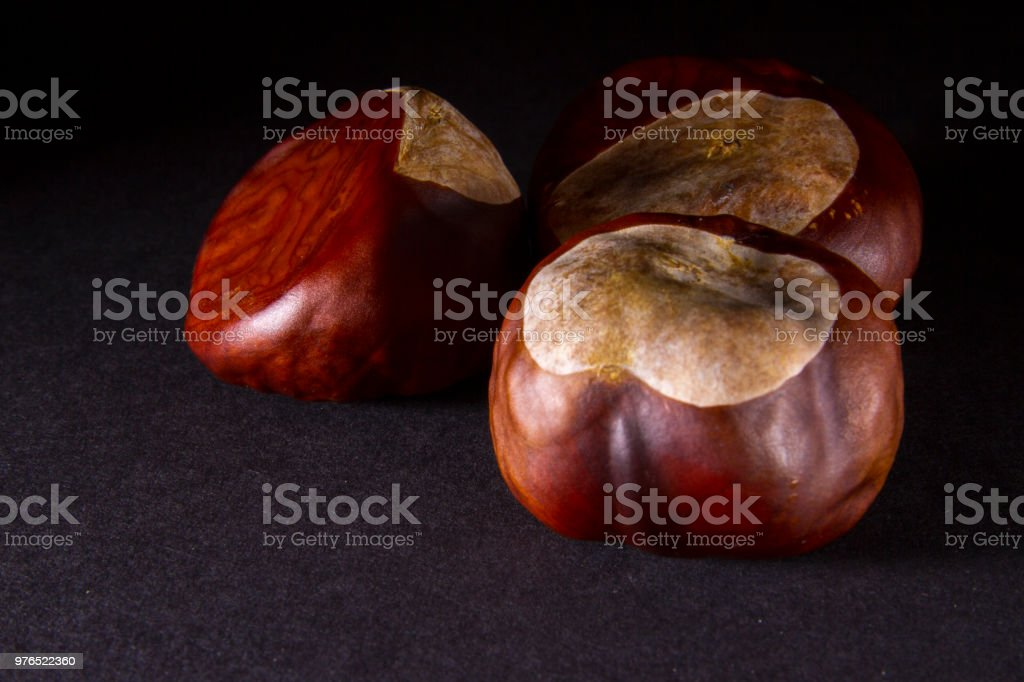 Conkers on black background stock photo