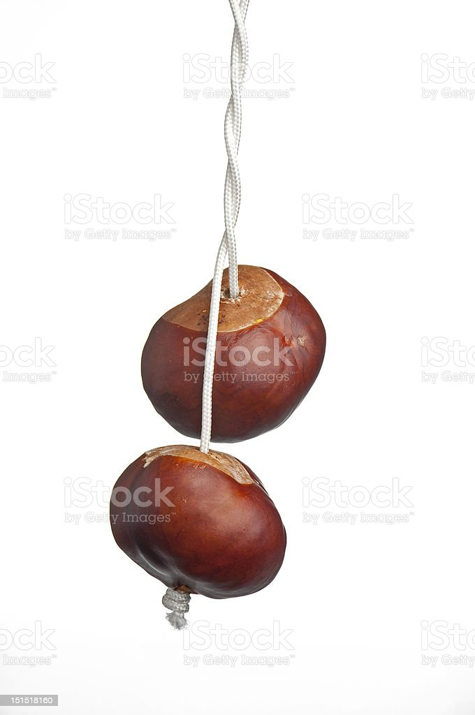 conkers on string stock photo