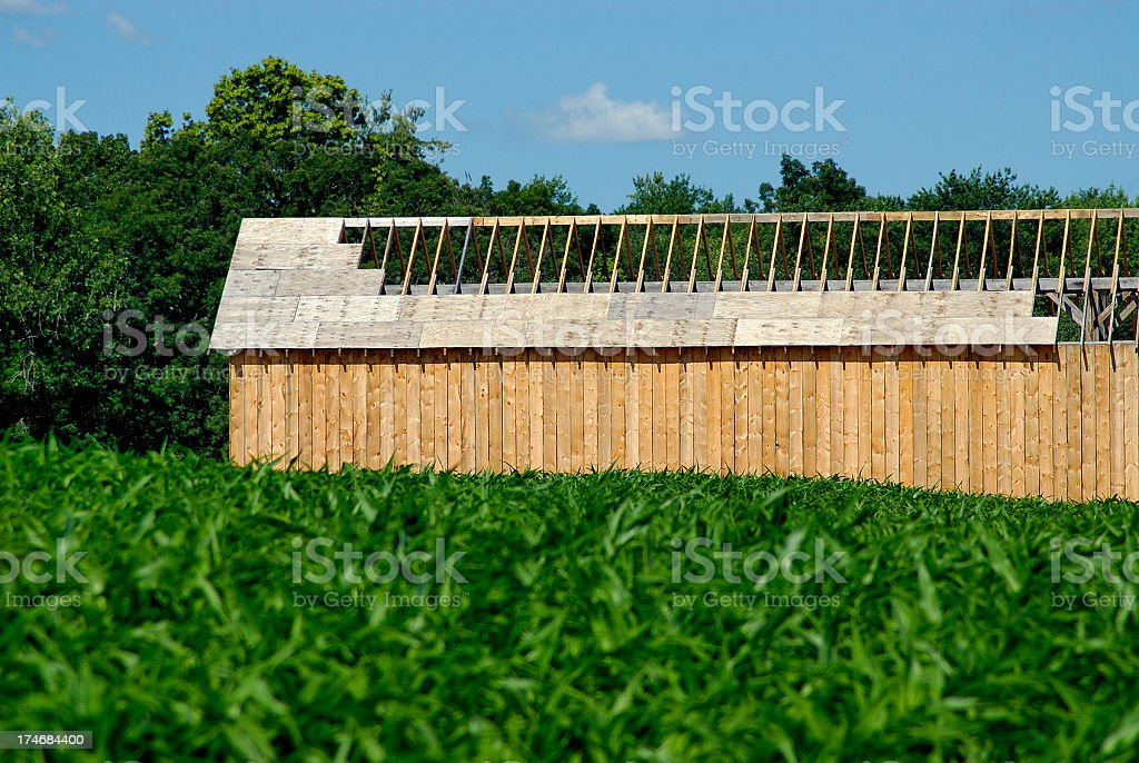 Connecticut Shade Tobacco Barn Under Construction stock photo