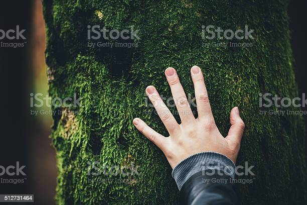 Photo of Connecting With Nature