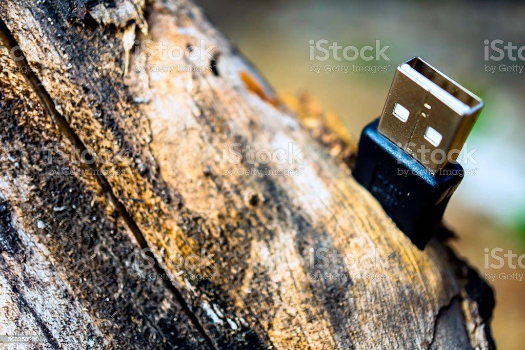 USB Connector stock photo