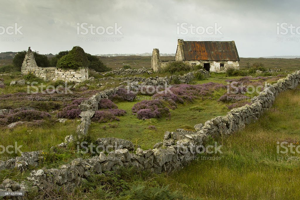 Connemara national park, Ireland stock photo