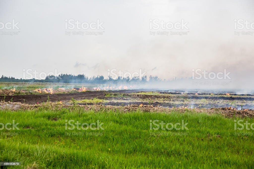 Conrtolled burn on farmland stock photo
