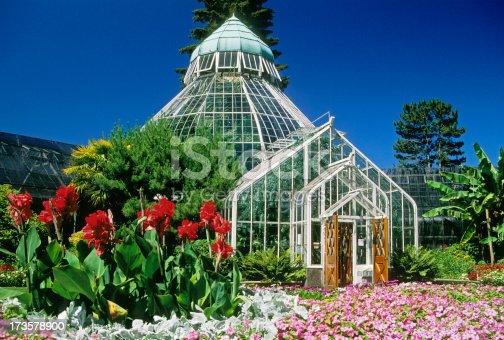 istock Conservatory 173578900