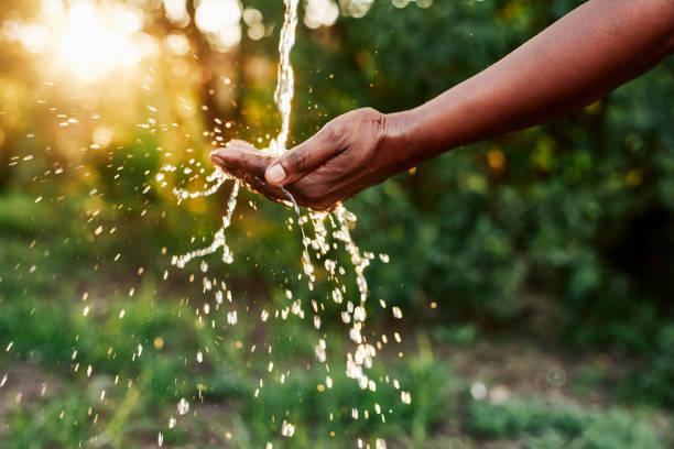 물을 절약하고 생명을 보존합니다. - 수돗물 뉴스 사진 이미지