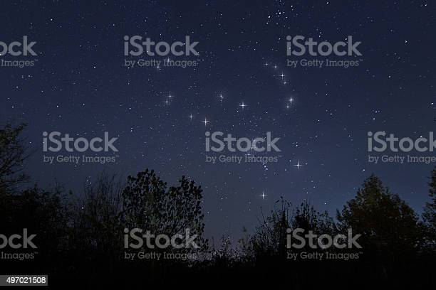 Photo of Constellation of Orion in real night sky, The Hunter
