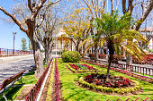 istock Constitution square in La Orotava, Tenerife, Canary islands, Spain 1309800319