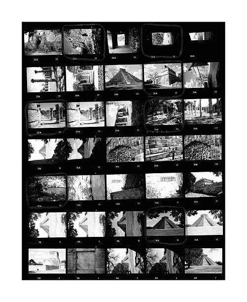 Contact Sheet Contact sheet of old black and white film negatives on traditional photo paper film negative stock pictures, royalty-free photos & images