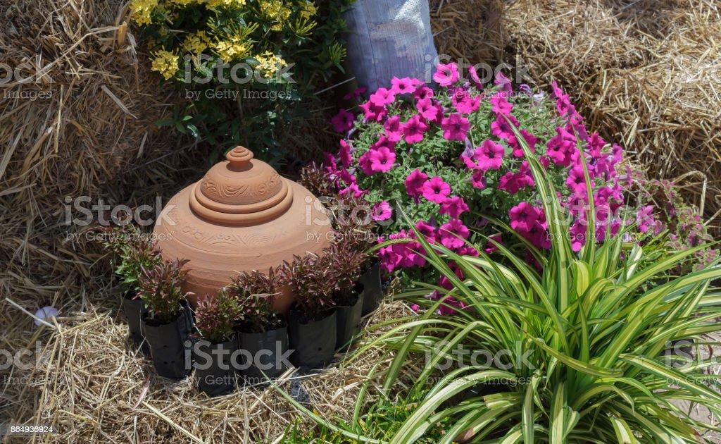 Container for garden water storage.