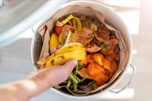 Container voller heimischer Lebensmittelabfälle kompostiert – Foto