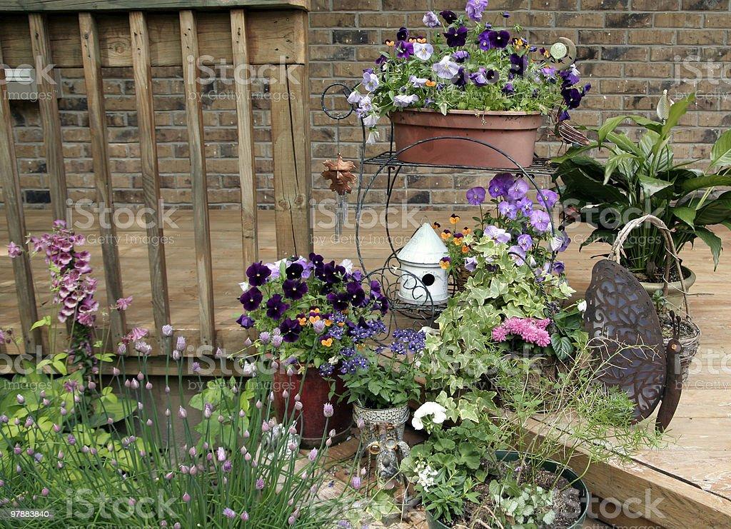 Container garden royalty-free stock photo