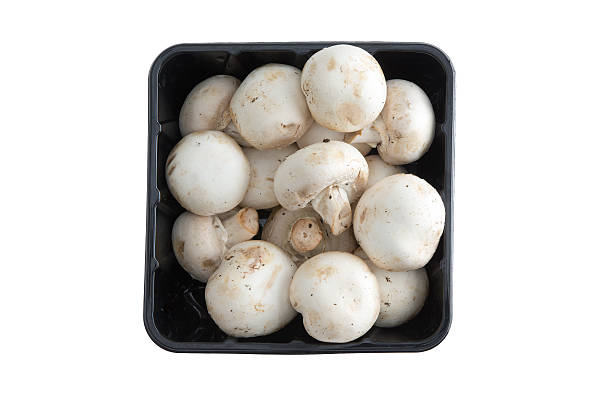 Container of farm fresh button mushrooms Container of farm fresh button mushrooms, or Agaraicus bisporus, one of the most popular cultivated mushrooms used in vegetarian and savory cuisine, isolated on white, overhead view fruit carton stock pictures, royalty-free photos & images