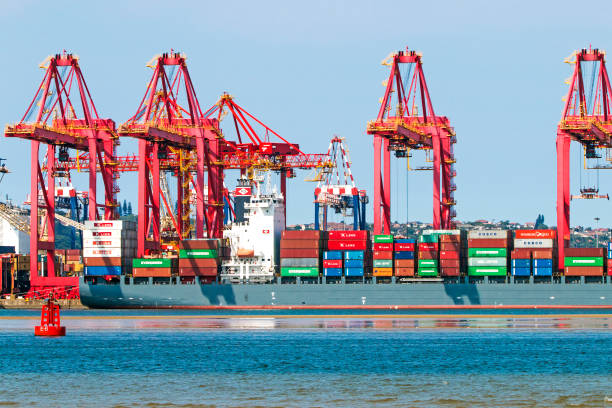Container Ship and Red Loading Cranes in Harbor – Foto