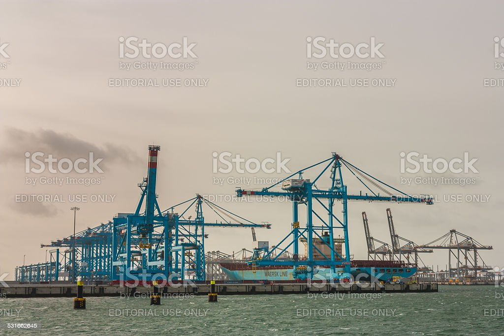container terminals at the maasvlakte stock photo