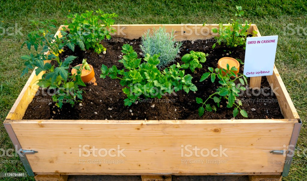 Container to make a vegetable garden on your balcony or terrace. On...