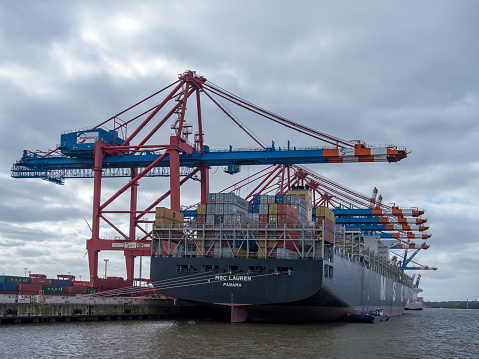 Container vessel MSC Lauren at Eurogate Terminal in Hamburg at day.