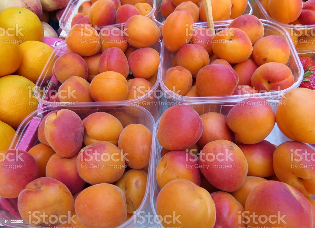 Containers of fresh apricots at market stock photo