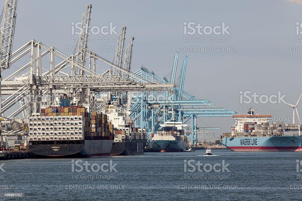 Containership Darwin stock photo