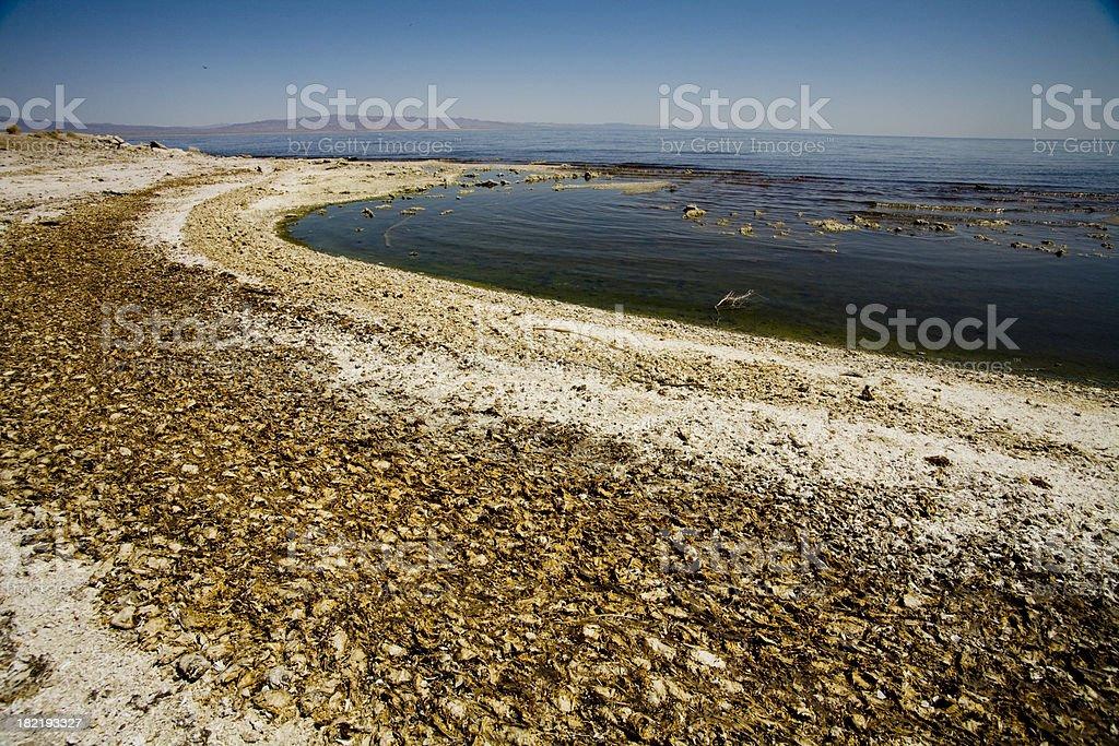 contaminated water stock photo