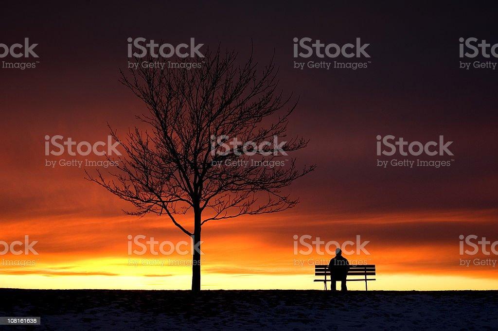 Contemplative Sunset royalty-free stock photo