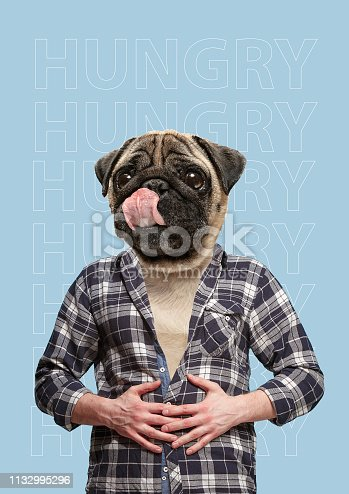 Contemporary art collage or portrait of positive dog headed man. Modern style pop zine culture concept. hunger