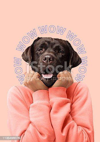 Contemporary art collage or portrait of surprised dog headed woman. Modern style pop zine culture concept.