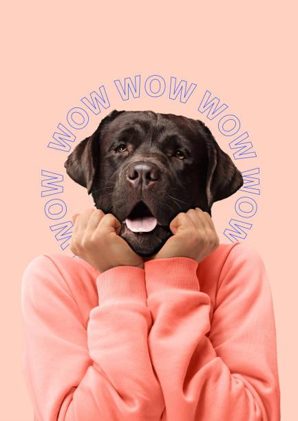 contemporary art collage or portrait of surprised dog headed woman. modern style pop art zine culture concept. - surrealistyczny zdjęcia i obrazy z banku zdjęć
