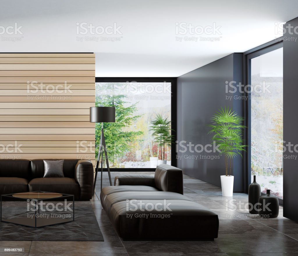 Contemporary Dark Minimalist Living Room Interior Stock Photo Download Image Now Istock