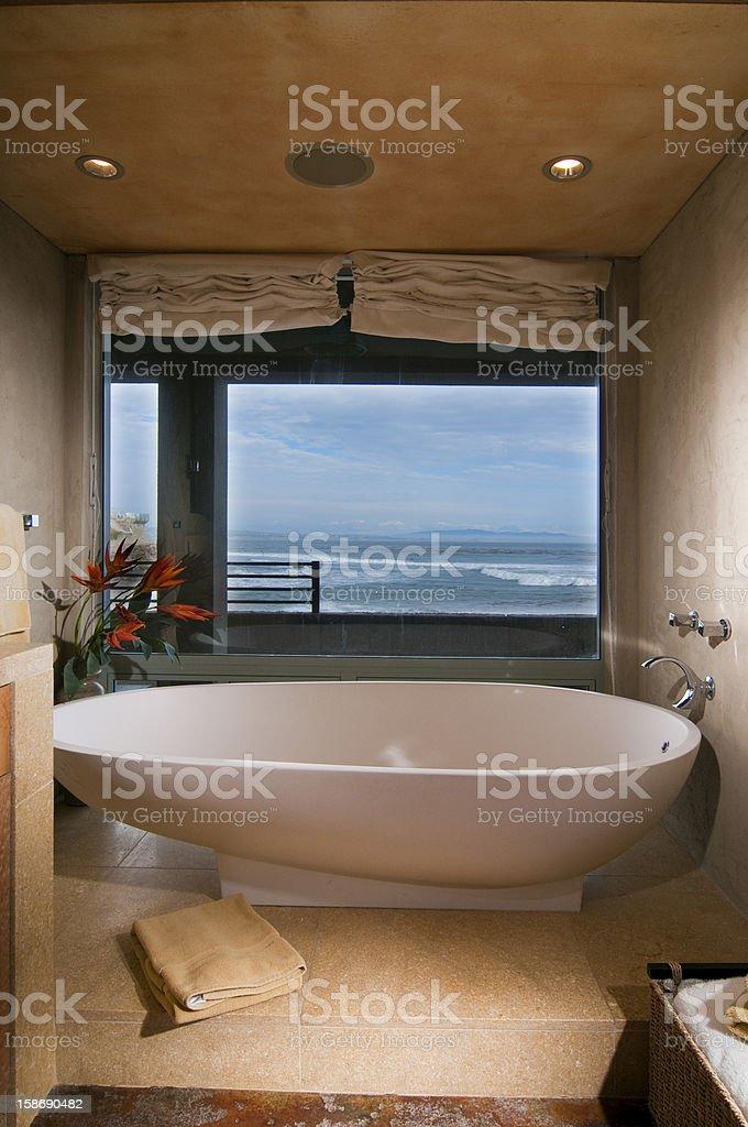 Contemporaneo A Forma Di Uovo Vasca Da Bagno Con Vista Sul Mare Fotografie Stock E Altre Immagini Di Acqua Istock