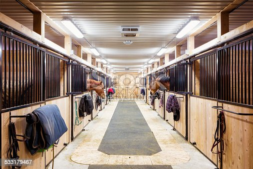 Contemporary horse stalls in horse riding school. Saveral horses are peeking through their windows.