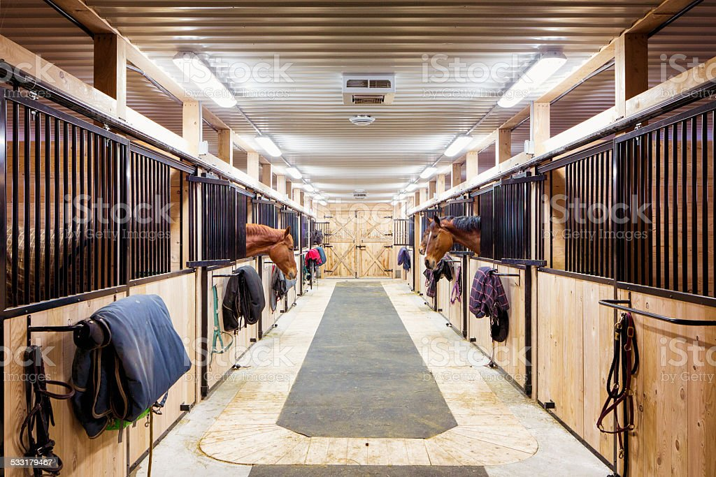 Contemporary horse stalls stock photo