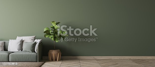 988616560 istock photo Contemporary interior design for interior mock up in living room. Empty green wall in Scandinavian home decor, Panorama. Stock photo 1227523913