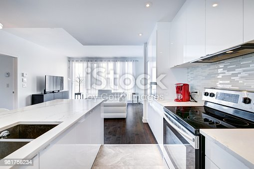 Images of the kitchen taken in Montreal, Rouge Condominiums, hotel room