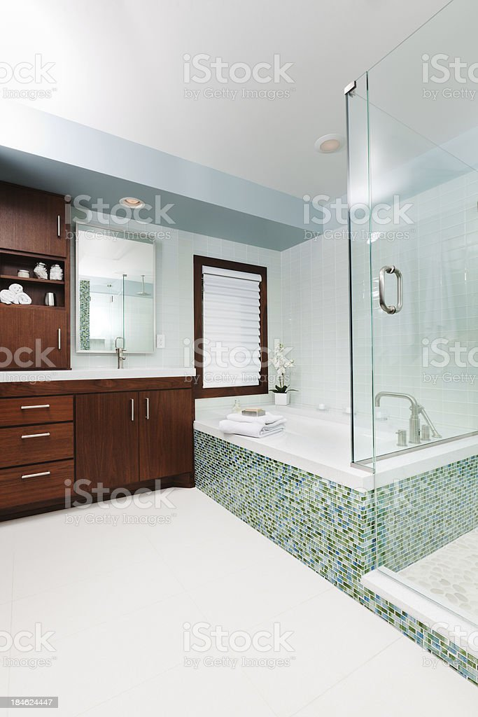 Contemporary Residential Bathroom with Shower Stall Vanity and Bath Tub royalty-free stock photo