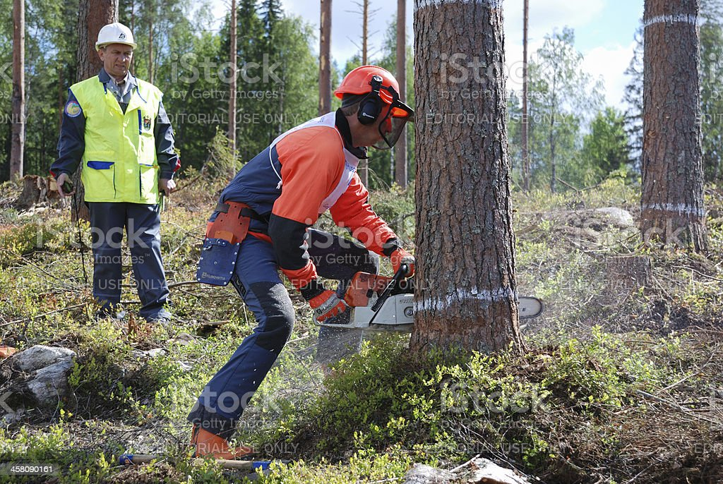 Contest of professional timber fellers Woodcutter - 2007 stock photo