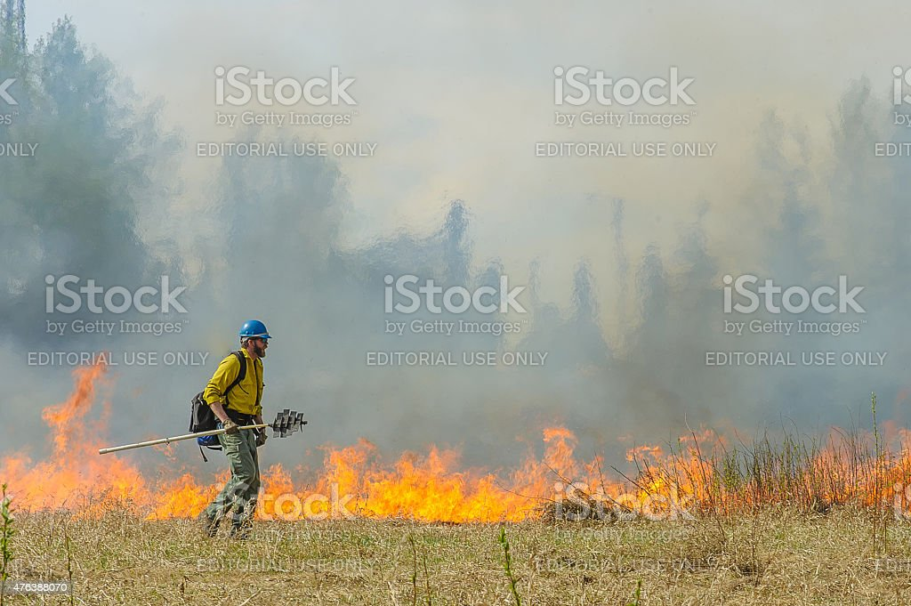 Contolled Burn stock photo