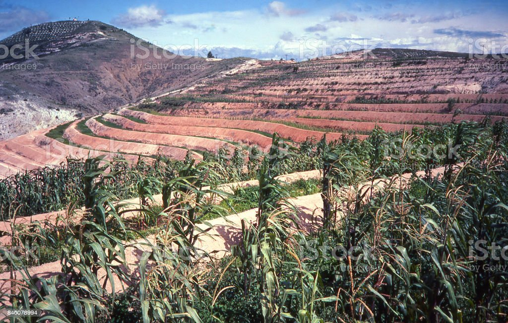 Contoured erosion control bunds on eroded hills near Asunción Nochixtlán Oaxaca Mexico stock photo