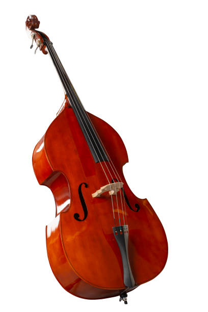 Contrabass isolated on white background stock photo